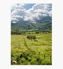 fence leading to trees and rocky mountains  Photographic Print