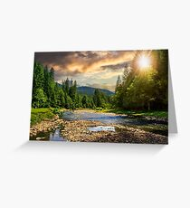 forest river with stones at sunset Greeting Card