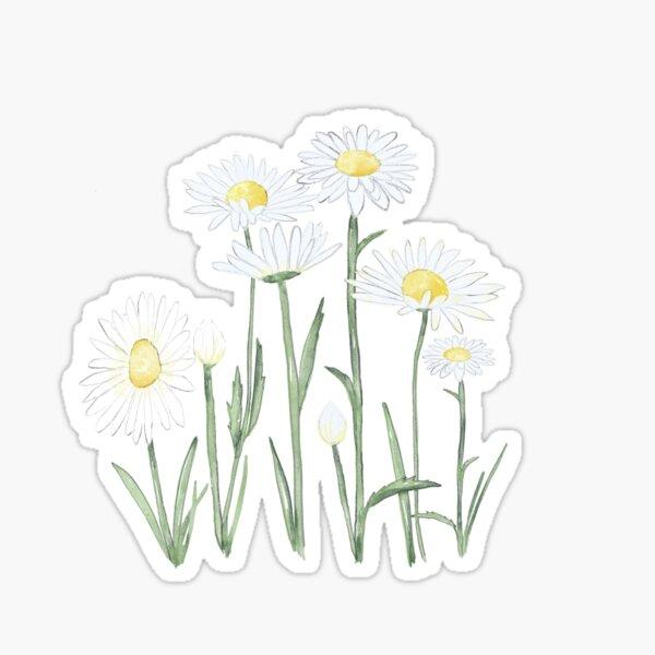 Happy Daisies watercolor  Sticker