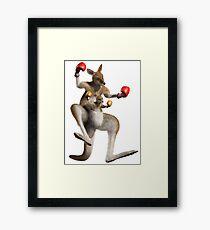 kangourou boxe Framed Print