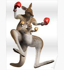 kangourou boxe Poster