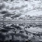 Salt Lake Reflections - Lake Hart by Dilshara Hill