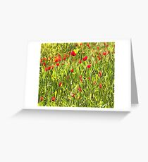 Surreal Hypnotic Poppies Greeting Card
