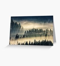 coniferous forest in foggy mountains Greeting Card