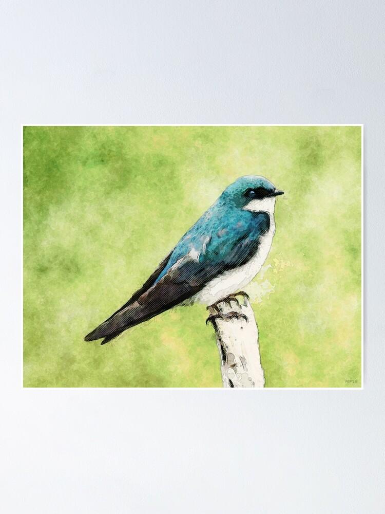 Alternate view of Blue Bird Poster