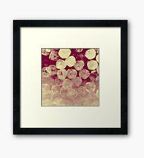 Redfin Framed Print