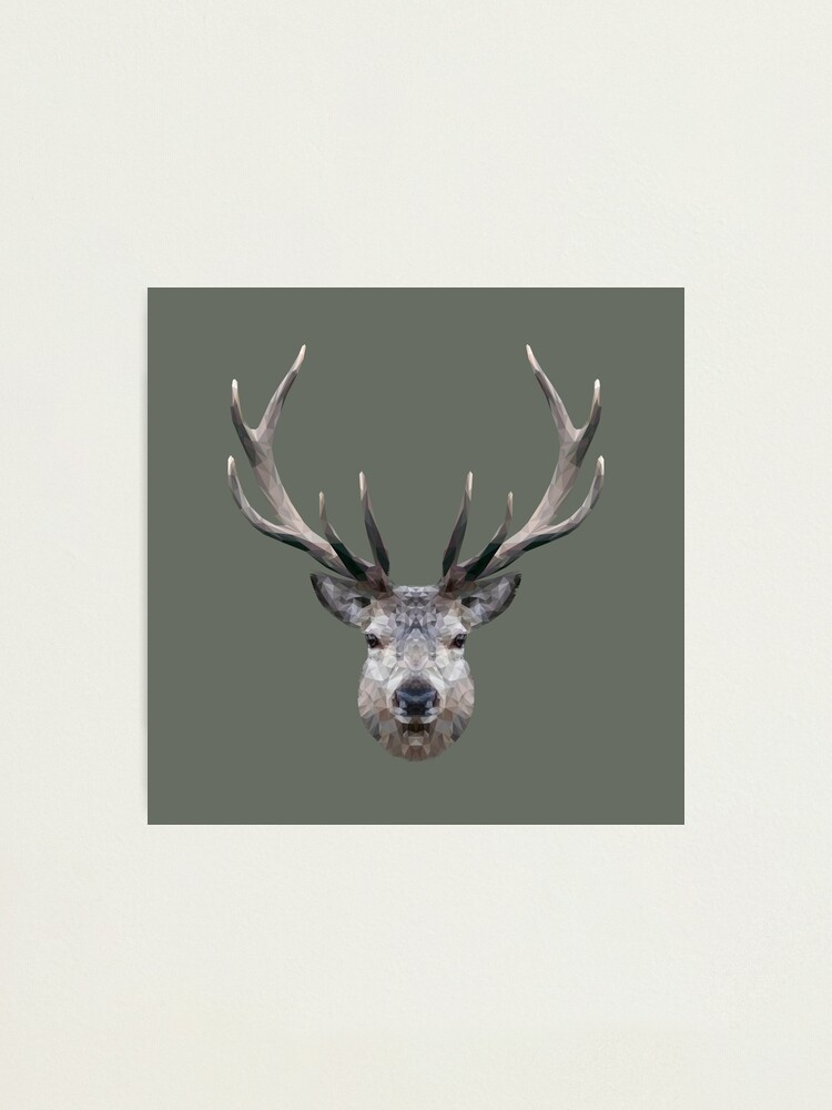 Alternate view of The Stag Photographic Print