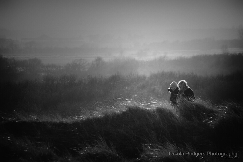 Friends by Ursula Rodgers Photography
