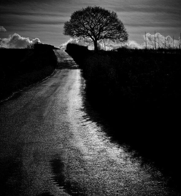 COUNTRY ROAD by Michael Carter