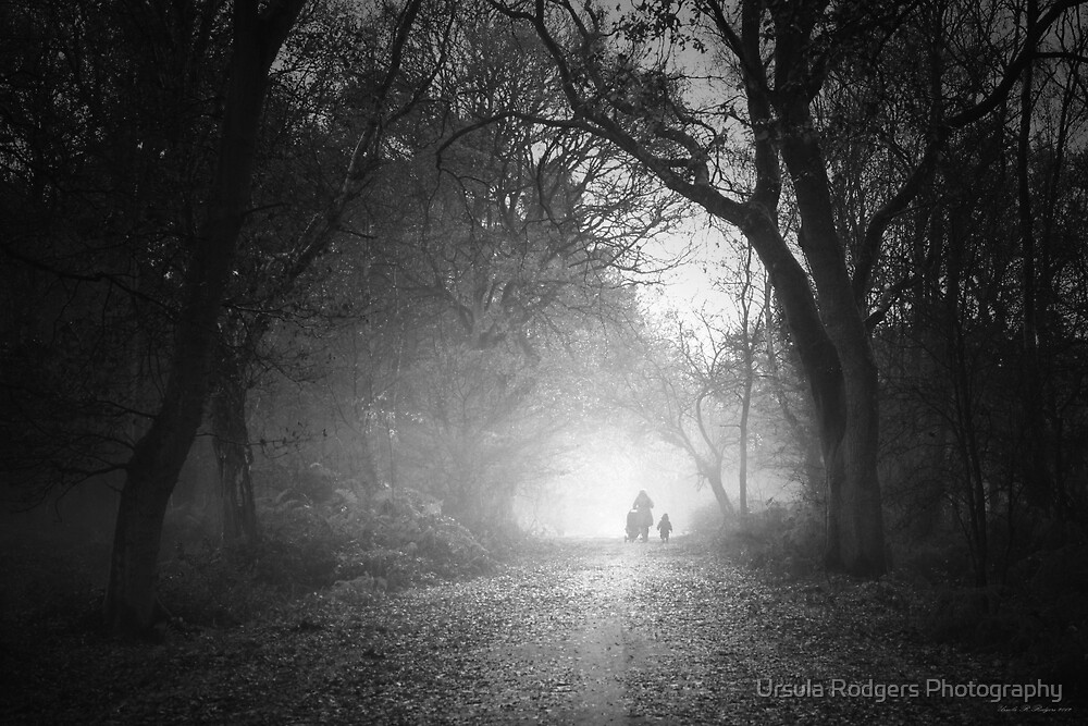Protection by Ursula Rodgers Photography