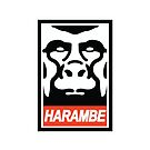 Obey Harambe by Keeters23