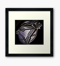 The Jays Framed Print