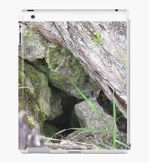Hidden Mystery iPad Case/Skin