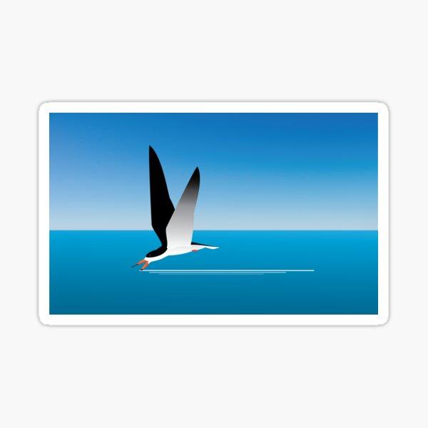 Black Skimmer skimming Sticker