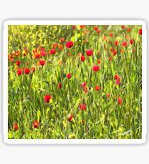 Flanders Poppies Sticker
