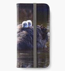warm up iPhone Wallet/Case/Skin
