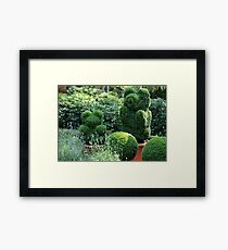topiary  of the garden  Framed Print