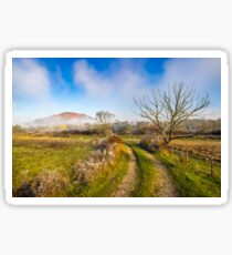 rural landscape with road through agricultural meadow in fog Sticker
