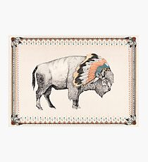 White Bison Photographic Print