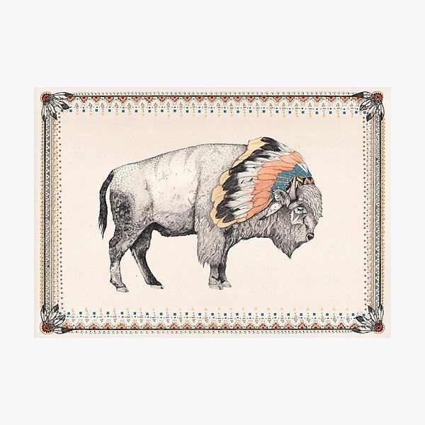 White Bison Photographic Print