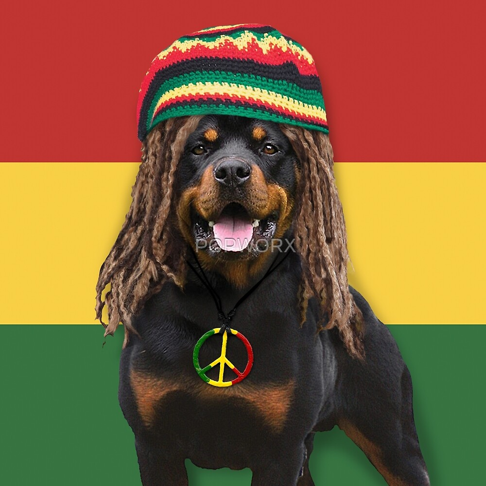 Rasta Dog by POPWORX