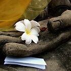 In Buddha's Hand by Caroline Fournier
