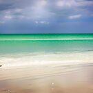 Siesta Key beach in Sarasota, Florida by Chris L Smith