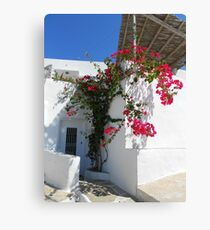 Greek  Canvas Print