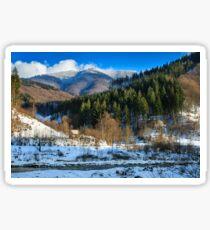 coniferous forest on the snowy mountain peaks Sticker