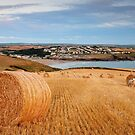 Polzeath harvest by Rachel Slater