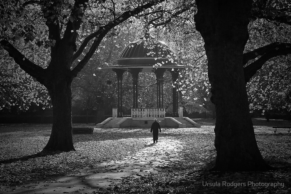 Southwark Park, II by Ursula Rodgers Photography