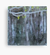 Water #11 Canvas Print