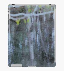 Water #11 iPad Case/Skin