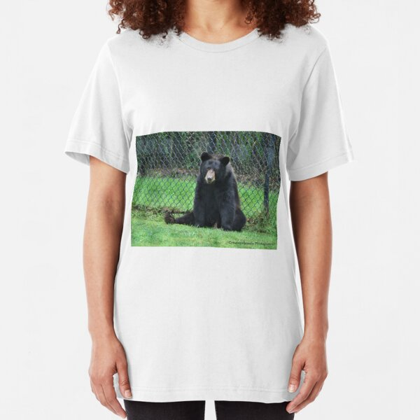 Yogi Bear T Shirts Redbubble