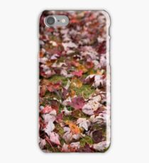 Autumn Leaves 1 iPhone Case/Skin