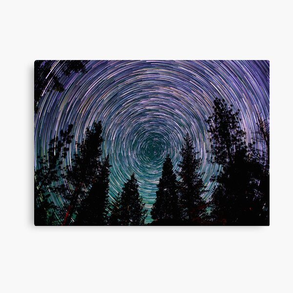 Polaris Star Trails Over Forest in King's Canyon  Canvas Print