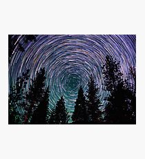 Polaris Star Trails Over Forest in King's Canyon  Photographic Print