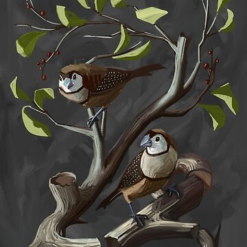 Owl Finches Float by JAHBriggs