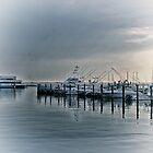 Atlantic Highlands Harbor at Sunrise  New Jersey   USA   blue by MotherNature2