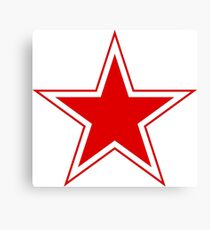 Roundel of Belarus Air Force  Canvas Print
