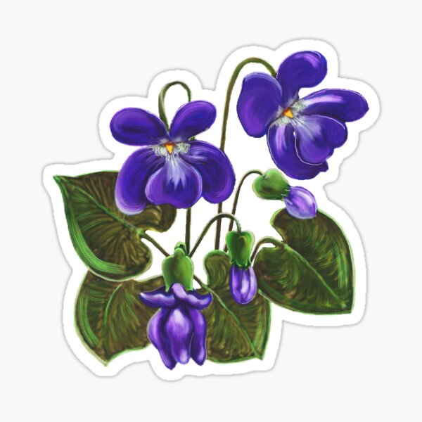 D1G1TAL-M00DZ ~ FLORAL - Violets by tasmanianartist Sticker