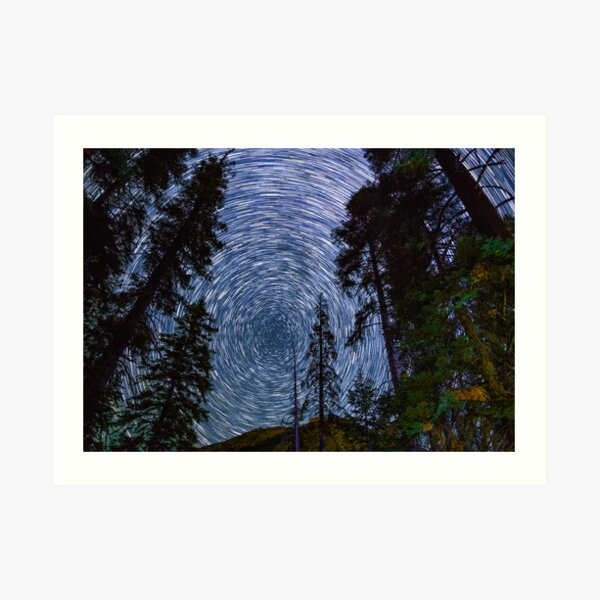 Polaris Star Trails Over Big Forest in King's Canyon Art Print