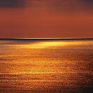 Good Morning Sunshine by Terri~Lynn Bealle