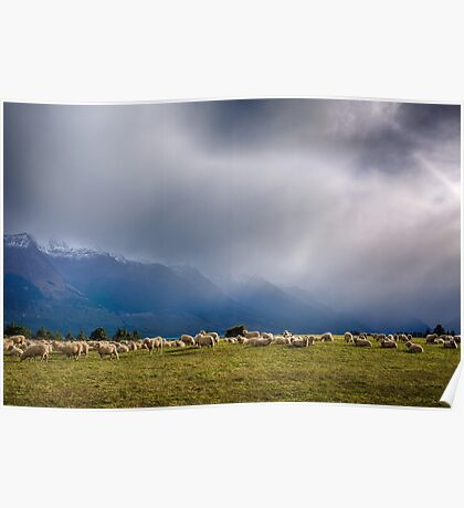 Sheep-storm Brewing Poster