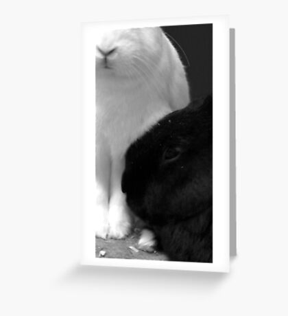 Toe to nose Greeting Card