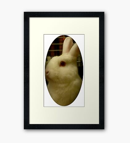 Profile Picture Framed Print
