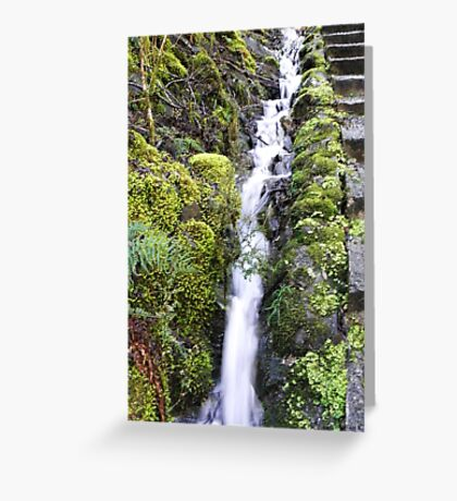 100 Steps  Greeting Card