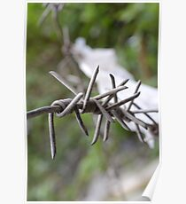 Barbed. Poster