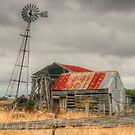 Country Gold by Michael Matthews