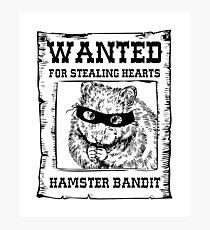 Hamster Bandit Photographic Print